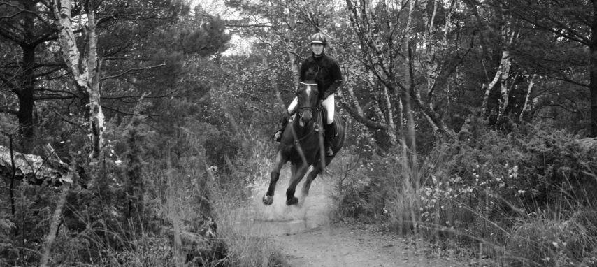 Stierna Equestrian Sportswear